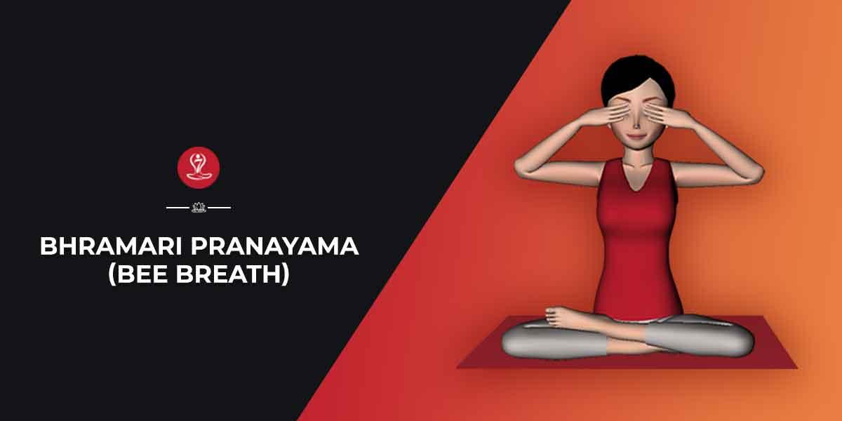 Bhramari pranayama