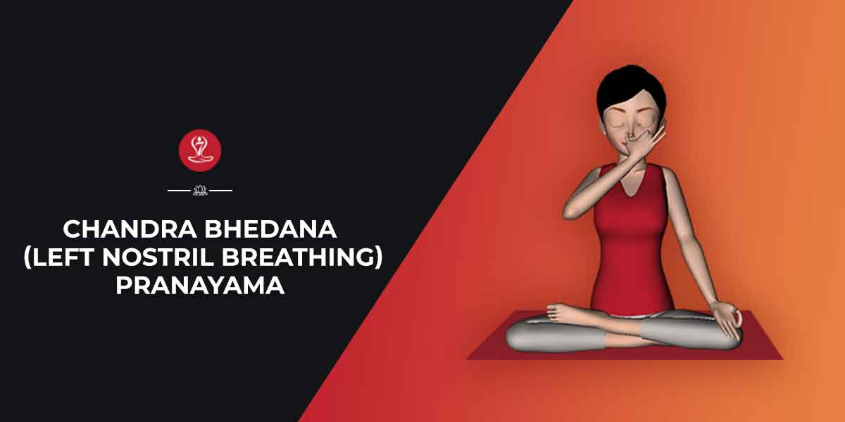 Chandra Bhedana Left Nostril Breathing Pranayama Steps Benefits
