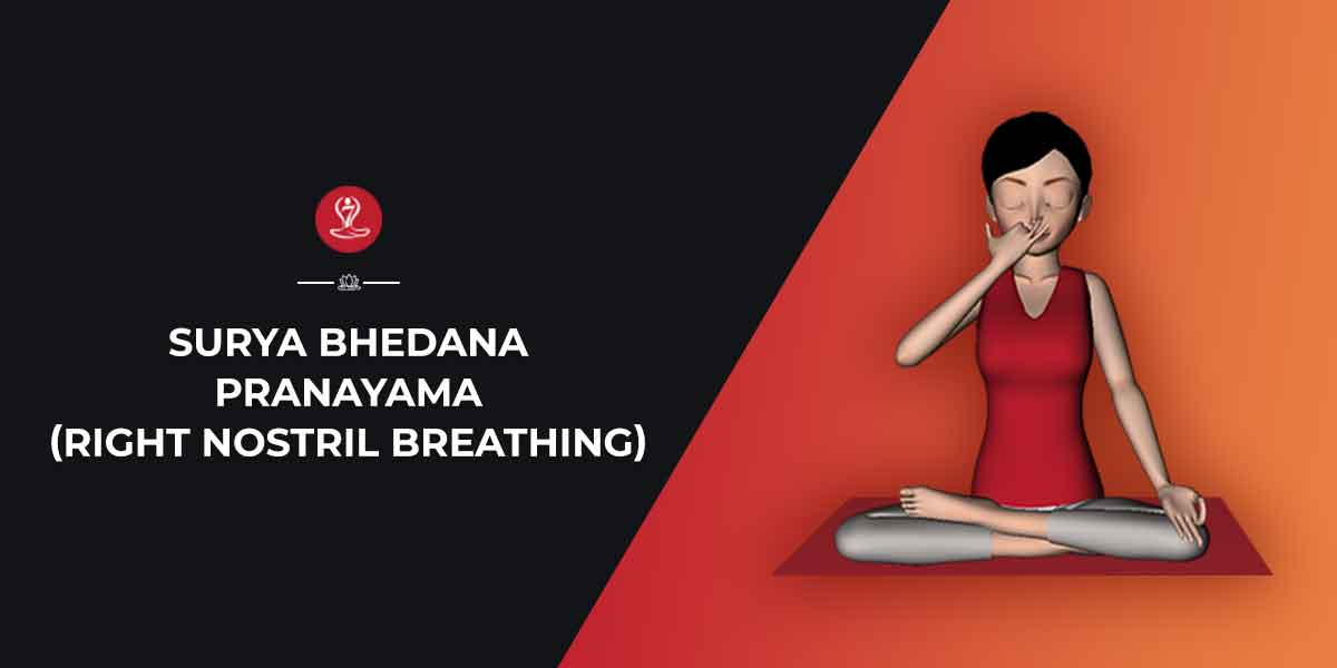 Surya Bhedana Pranayama Right Nostril Breathing Steps Benefits