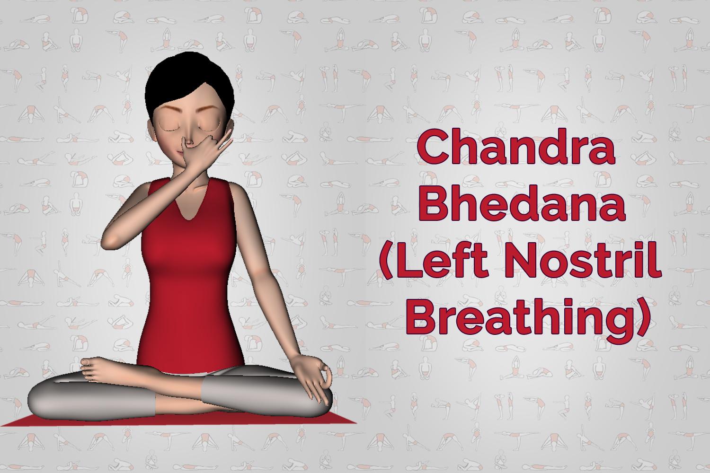 Chandra Bhedana Left Nostril Breathing Pranayama Steps Benefits