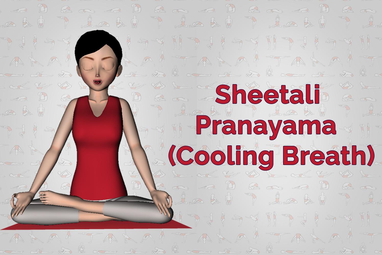 Sheetali Cooling Breath Pranayama Steps Benefits