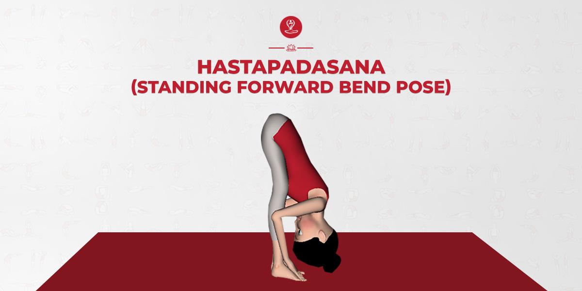 Hastapadasana Yoga Standing Forward Bend