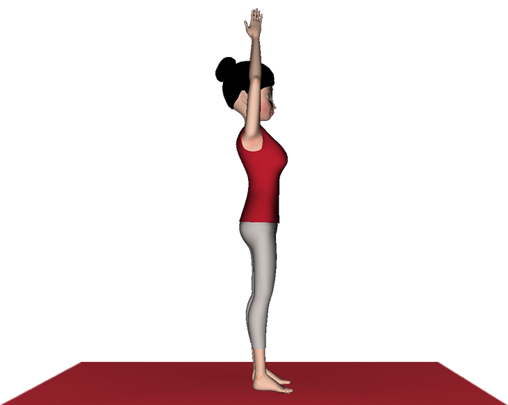 Hastapadasana Yoga Standing Forward Bend
