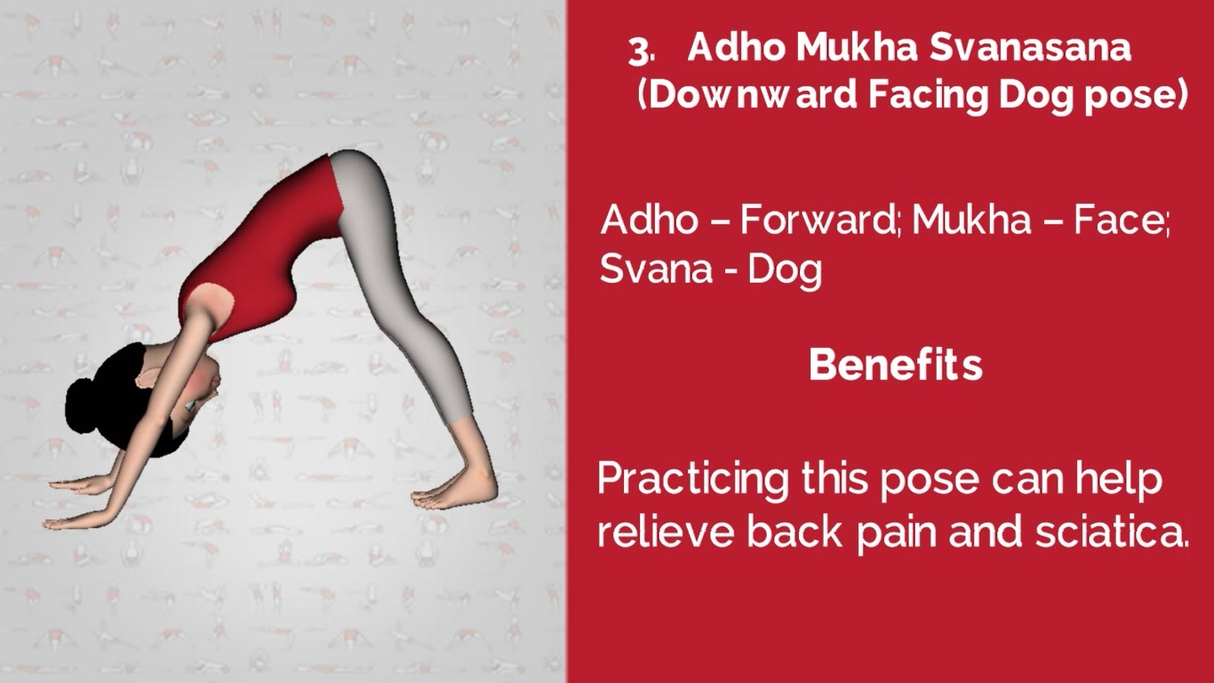 3 Yoga pose for Back Pain is Adho Mukh Savasana