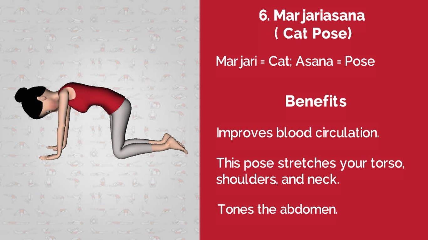 6 Yoga pose for back pain is Marjariasana