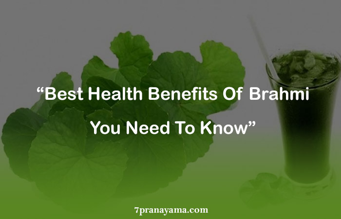 Benefits of Brahmi
