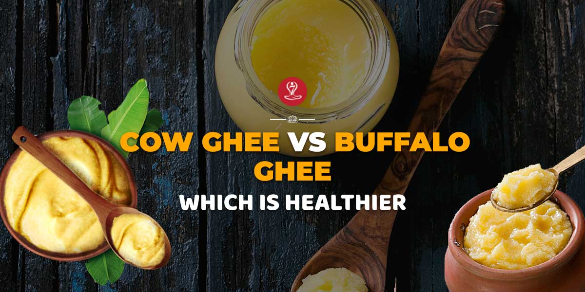 Cow Ghee vs Buffalo Ghee