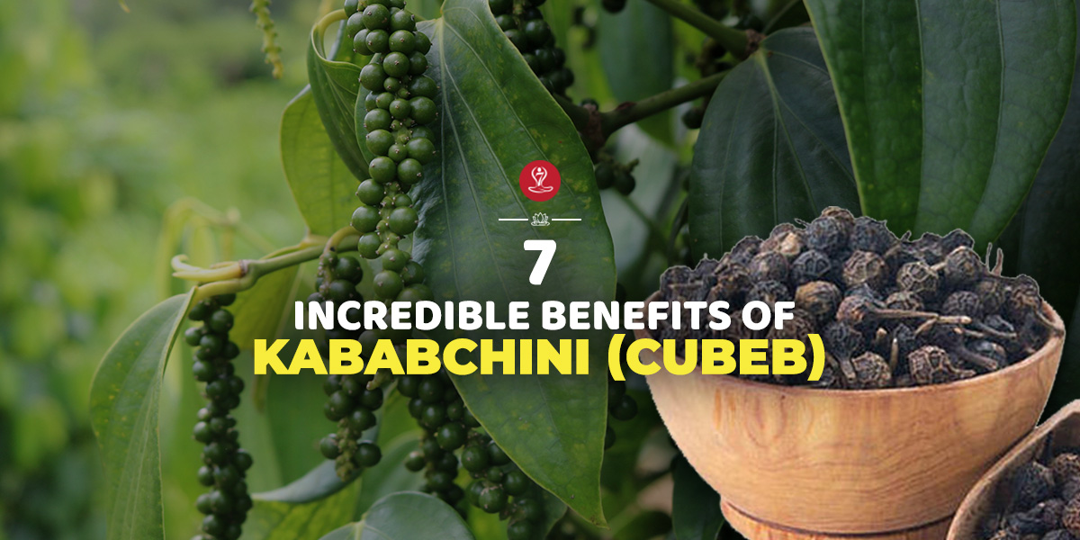 Kababchini (Cubeb)