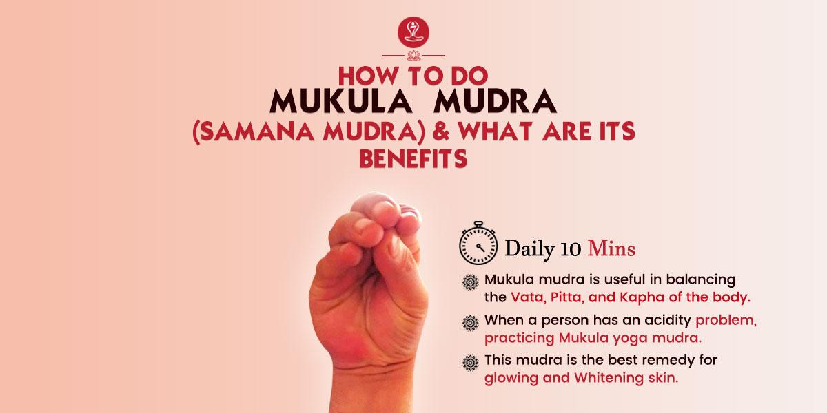 Mukula Mudra