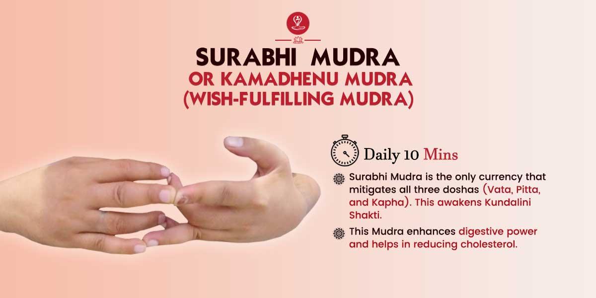 Surabhi Mudra