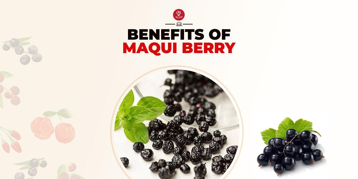 Benefits of Maqui Berry