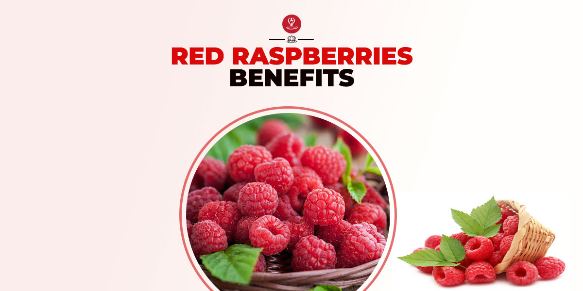 Red Raspberries Benefits