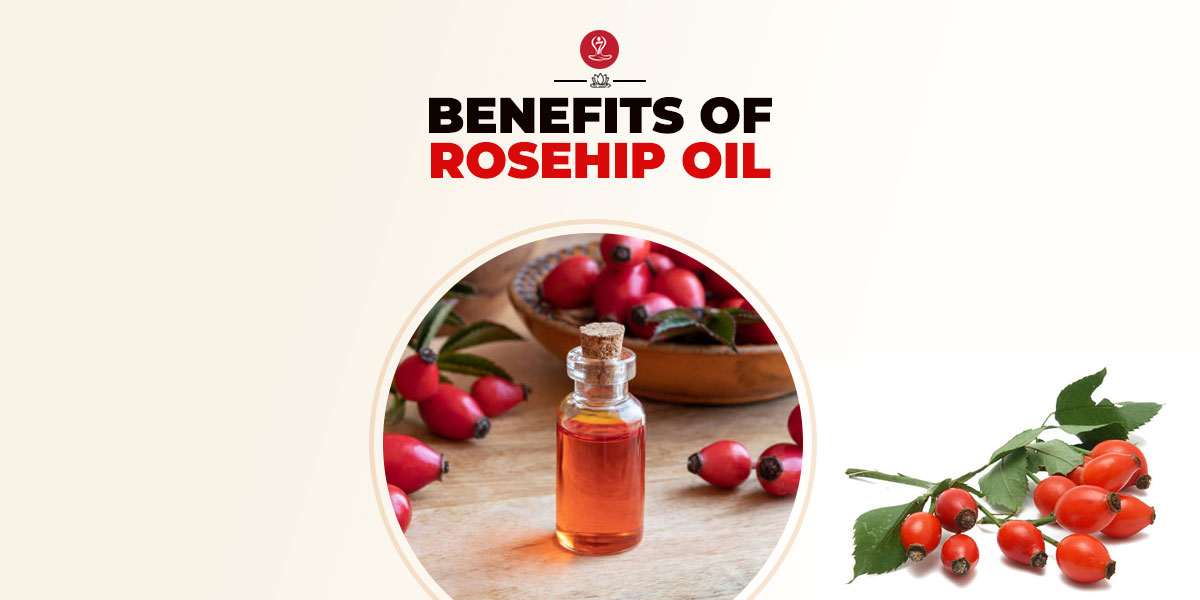 Benefits of Rosehip Oil